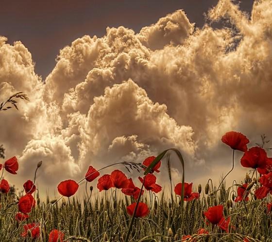 Clouds_82